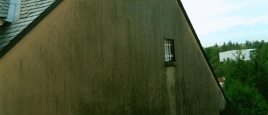 murs_1